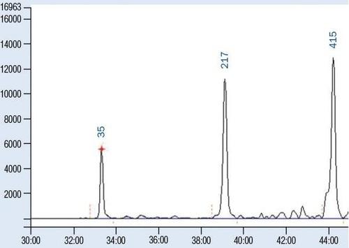 SSR/STR毛细胞电泳图