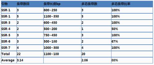 SSR/STR技术服务结果分析